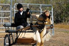 Central Texas Kink Pony Jamboree 2008