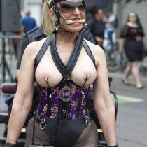 Folsom Street Fair 2014  Photo by tweeker