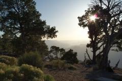 Grand Canyon May 2013 South Rim - East